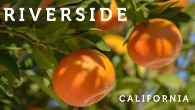 Riverside-ca-oranges (1)